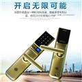 西勒奇(SCHLAGE)智能电子锁指纹密码锁SC201